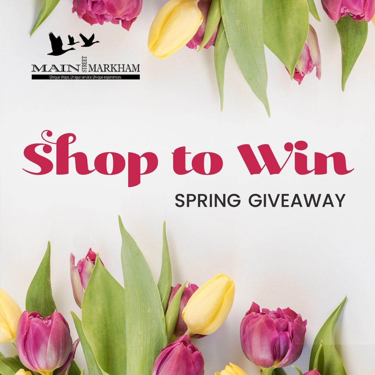Support local for a chance to WIN a $100 gift card to a business of your choice on Main Street Markham!  Steps to enter: 1. Support a local business within the Main Street Markham BIA. 2. Upload a clear photo of your receipt from your shopping, dining or service trip OR provide a screenshot of a written review of a Main Street Markham BIA business (via Google, Yelp etc). The receipt or review must be dated between May 1st, 2021 - May 30th, 2021. Digital or physical receipts are eligible. You can only enter once per day!  Winner of the $100 gift card will be announced and notified via email on May 31st, 2021.  Thank you for supporting local!